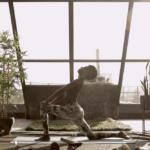 Earthseeds_Kemetic Yoga Series